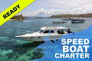 Sewa speedboat labuan bajo